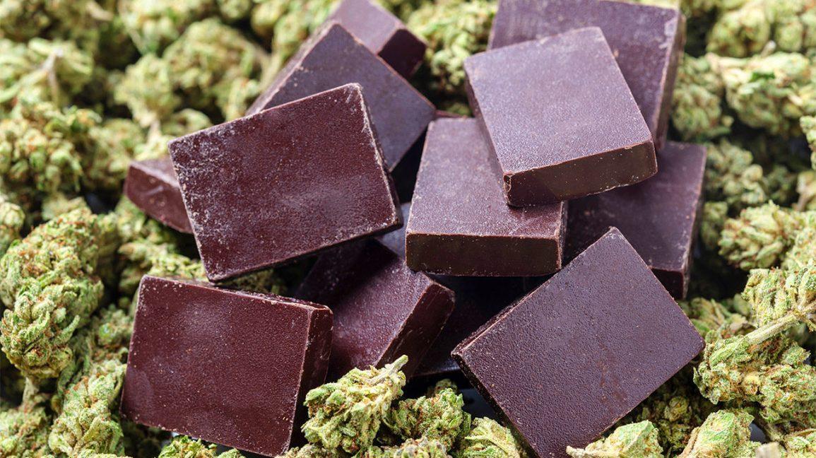 Cannabis e Chocolate: mais semelhantes do que se imagina