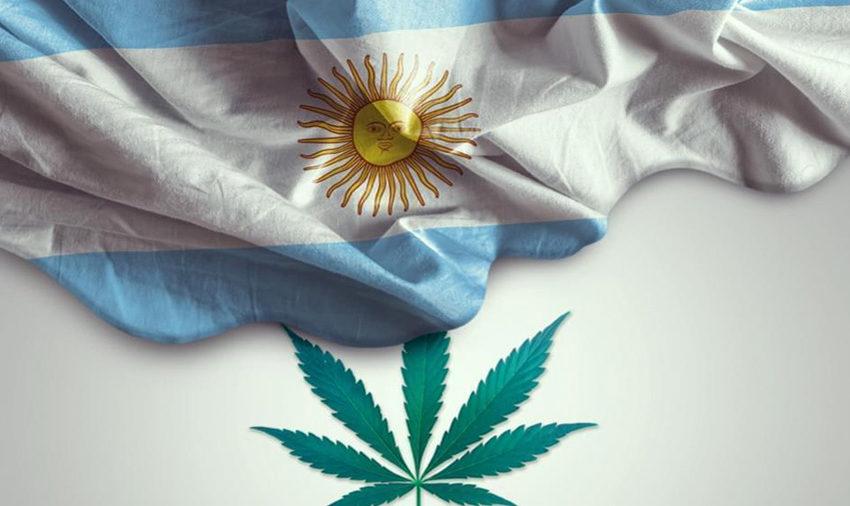 Senado aprova projeto de lei que regulamenta a indústria da Cannabis Medicinal e Cânhamo na Argentina