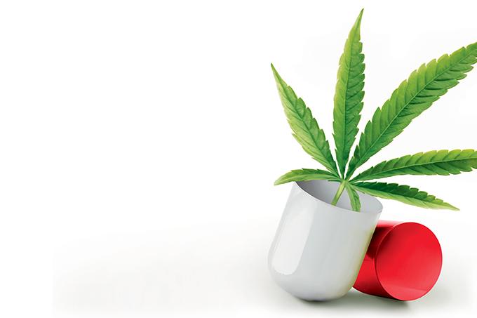 Cannabis será testada em pacientes com sequelas da COVID