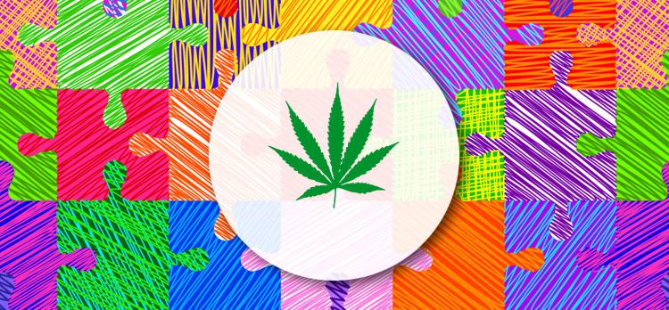 Uso de cannabis medicinal cresce entre pessoas com transtorno do espectro autista